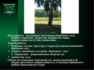 Цель работы: исследовать биогеоценоз берёзового леса, выявить причины дигресс