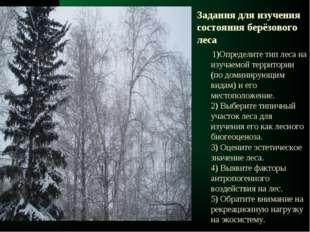 1)Определите тип леса на изучаемой территории (по доминирующим видам) и его