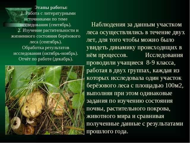 Наблюдения за данным участком леса осуществлялись в течение двух лет, для то...
