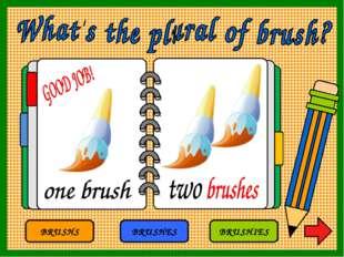 BRUSHS BRUSHES BRUSHIES