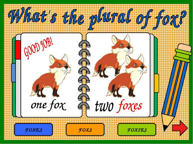 FOXS FOXES FOXIES