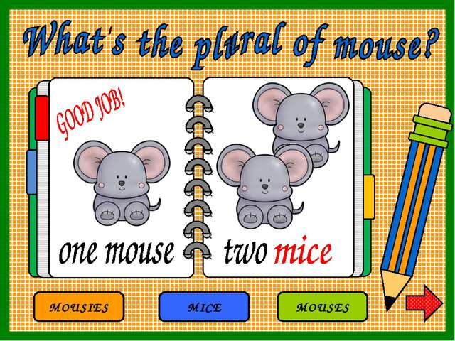 MOUSIES MICE MOUSES
