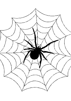 E:\РИСУНКИ\Садик\Семинар\Новая папка (2)\Spider_Web.png.jpg