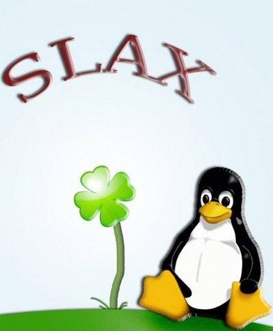 1366636139_slax.jpg