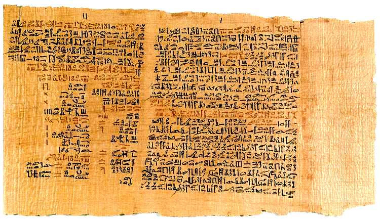 G:\мох\2 Папирус.jpg