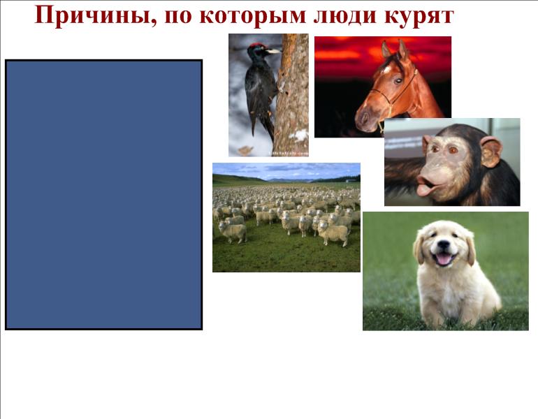 hello_html_31fa5616.png
