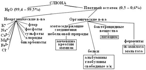http://festival.1september.ru/articles/212006/imga.jpg