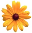 http://jpg.st.klumba.ua/img/users/avatars/original/215/avatar-215226-20120908090511.jpg