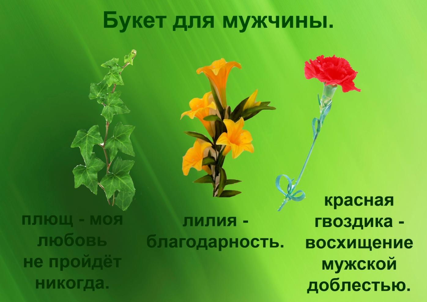 C:\Documents and Settings\я\Рабочий стол\Язык цветов. Презентация. Элина\21.букет для мужчины.jpg