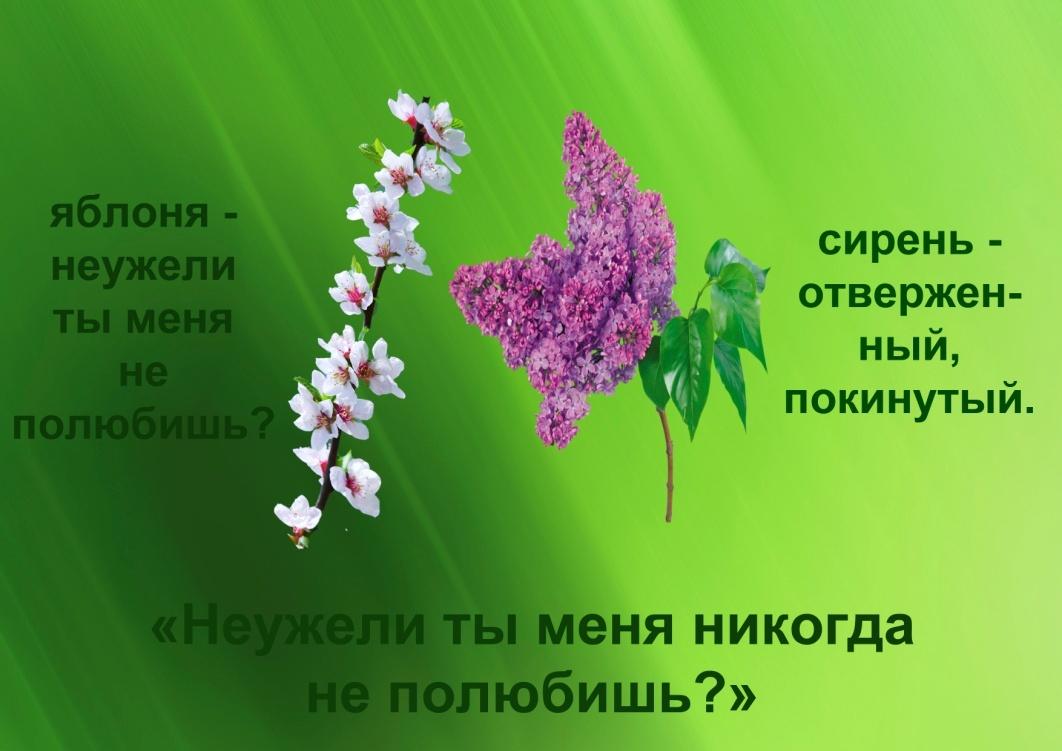 C:\Documents and Settings\я\Рабочий стол\Язык цветов. Презентация. Элина\22.отчаяние.jpg