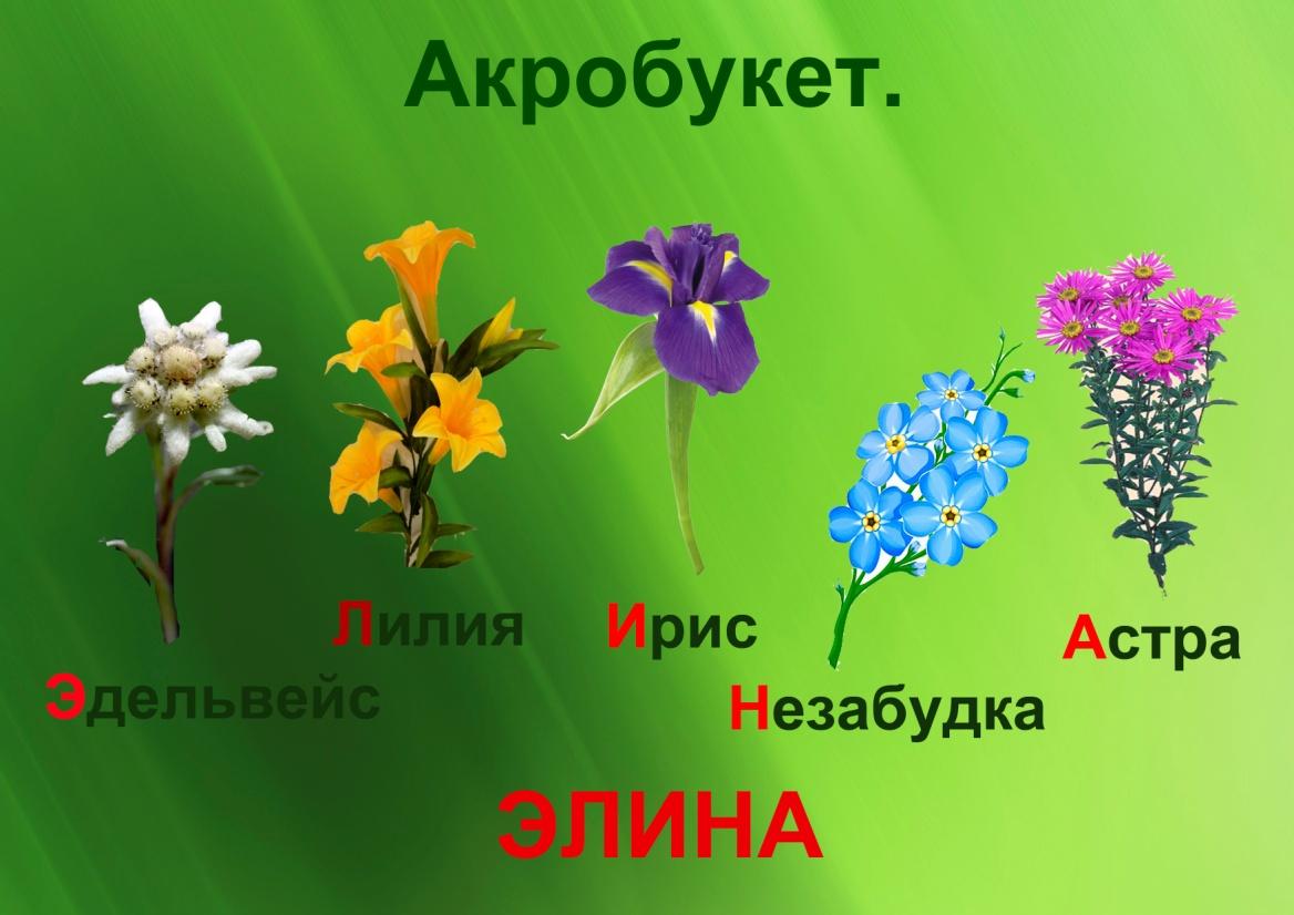 C:\Documents and Settings\я\Рабочий стол\Язык цветов. Презентация. Элина\23.акробукет.jpg
