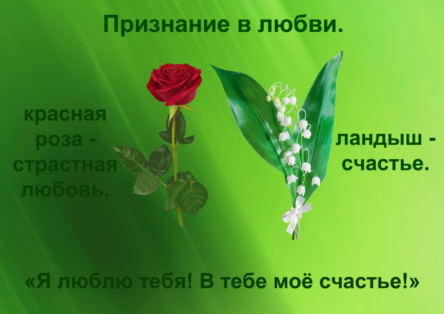 C:\Documents and Settings\я\Рабочий стол\Язык цветов. Презентация. Элина\20.признание в любви.jpg