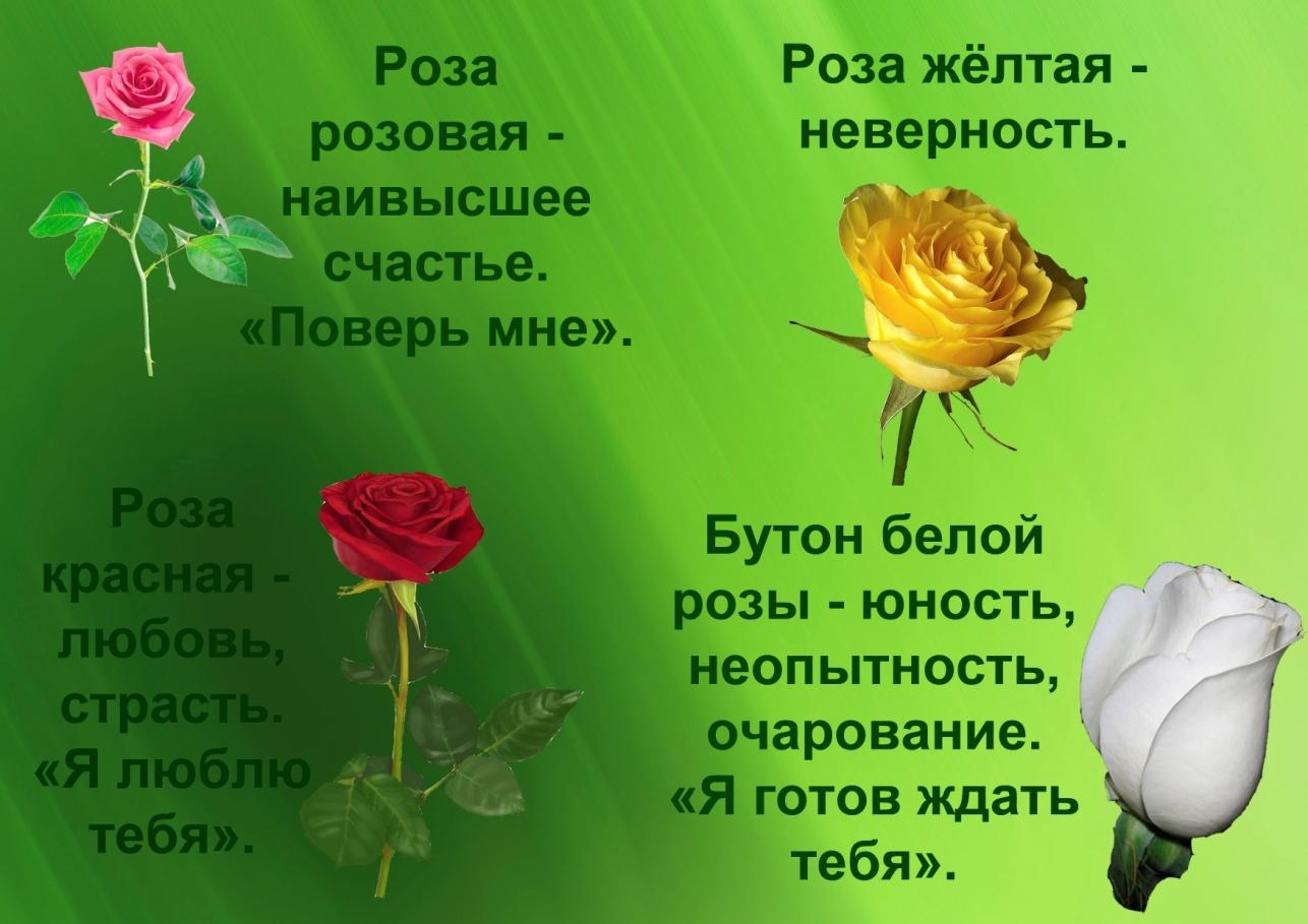 C:\Documents and Settings\я\Рабочий стол\Язык цветов. Презентация. Элина\19.розы.jpg