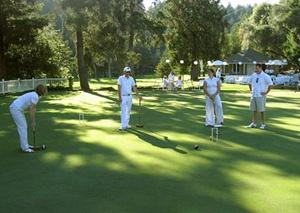 Крокет. Игра крокет. Сегодня крокет известен и популярен во многих странах мира, существуют спортивные клубы, которые объединины в Национальные Федерации. Международная Федерация Крокета. Croquet.
