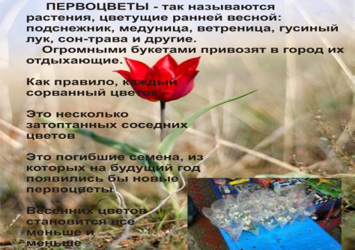 hello_html_750d618d.png
