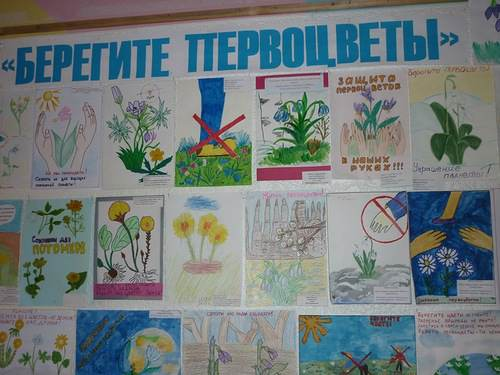 http://img-fotki.yandex.ru/get/6712/77733631.6/0_ad620_ad753fc_L.jpg