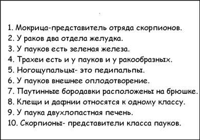 http://festival.1september.ru/articles/593719/img4.jpg
