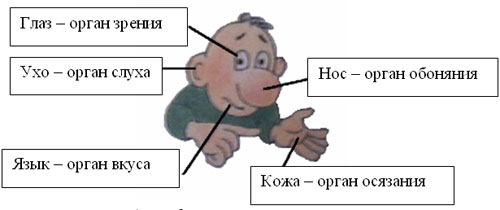 http://simonenkova-ov.150-odin-zaharovo.edusite.ru/images/clip_image003.jpg