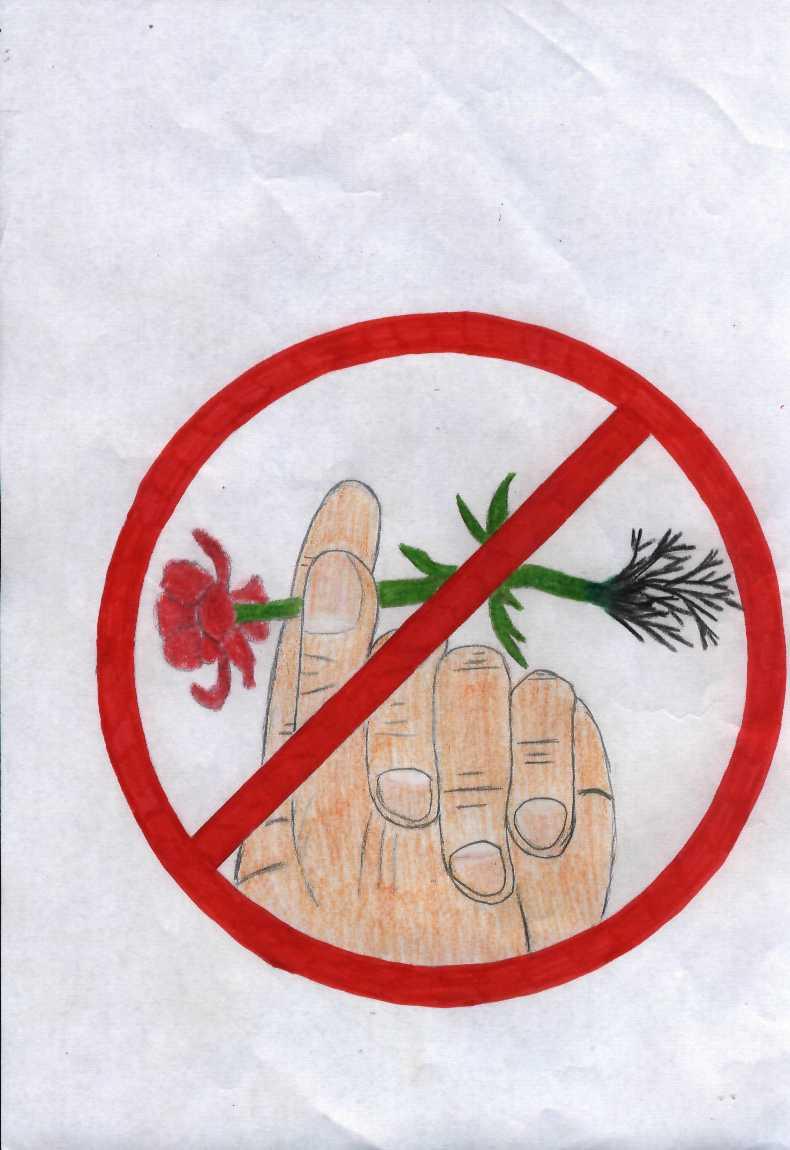 Картинки с природоохранными знаками хирано