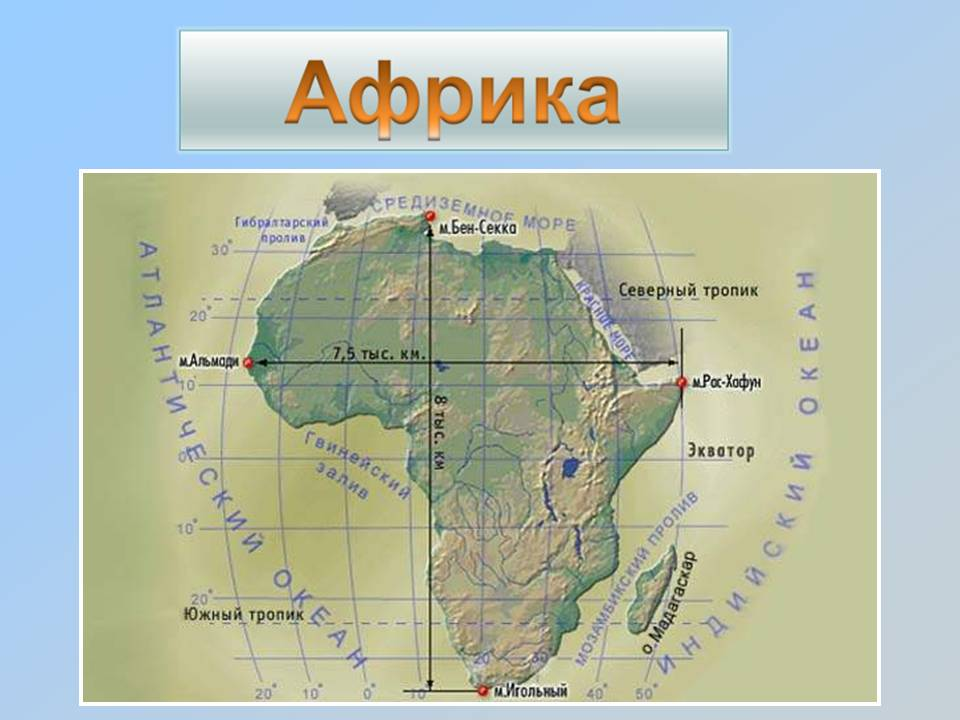 C:\Users\Татьяна\Desktop\Pictures\Африка.jpg