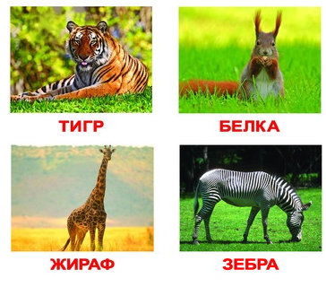 http://www.yavsemogu.ru/media/products/1208/dikie-2.jpg