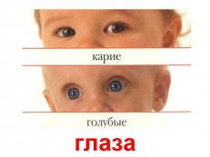 C:\Users\Наталья\Desktop\картинки\imgpreview (2).jpg