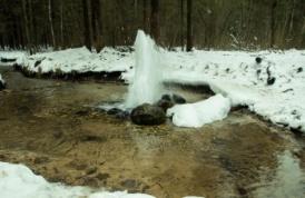 Фото природы. Гатчинские гейзеры (8 фото)