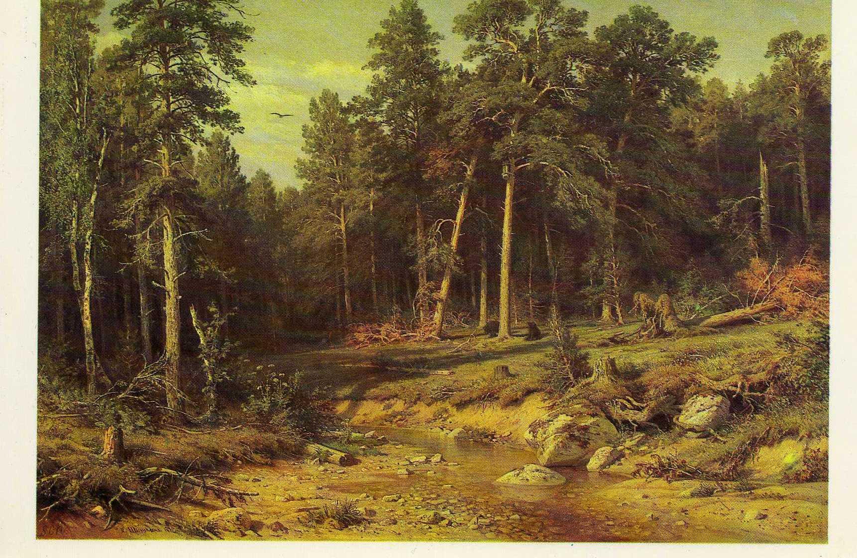 сочинение по картине шишкина лес в инее