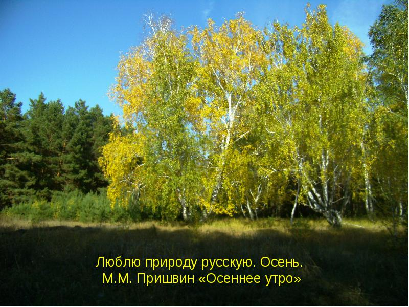 http://lib2.podelise.ru/tw_files2/urls_434/3/d-2695/img0.jpg