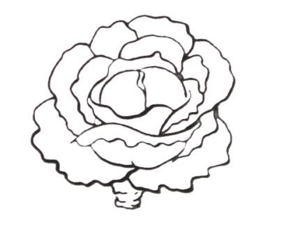 Как нарисовать фрукты и овощи и цветы Сайт о рисовании