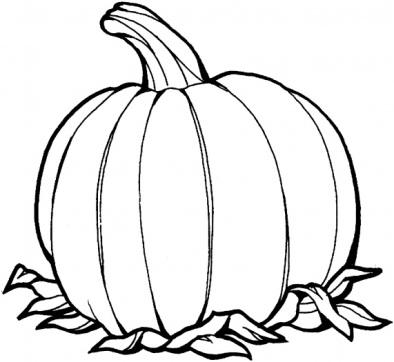 раскраски Осень , раскраска Осень , раскраски для печати Осень