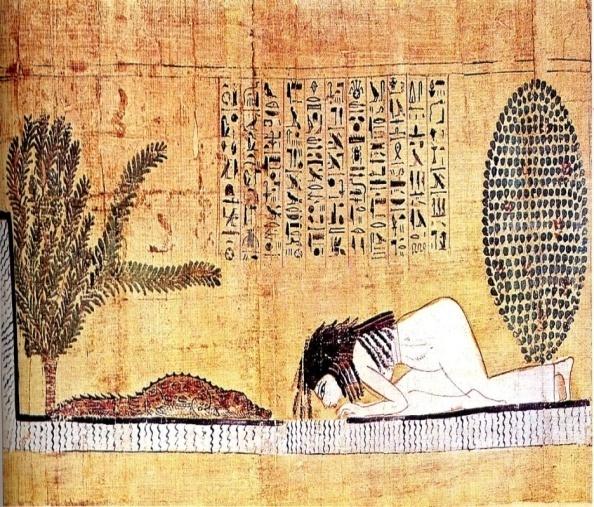 папирус2
