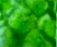 hello_html_41cf1e47.png