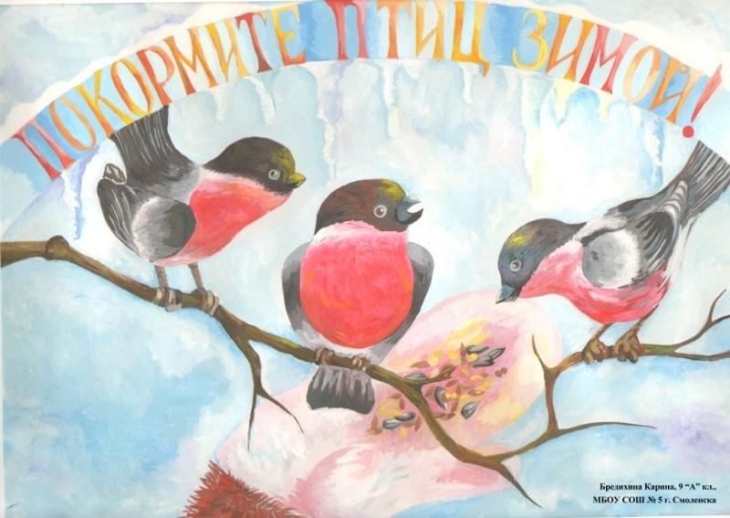 Зимняя подкормка птиц