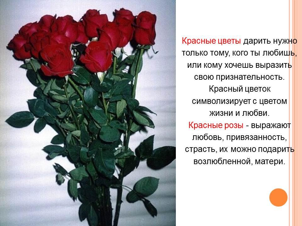 Какие розы можно подарить кому и когда
