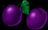 berries_69.png