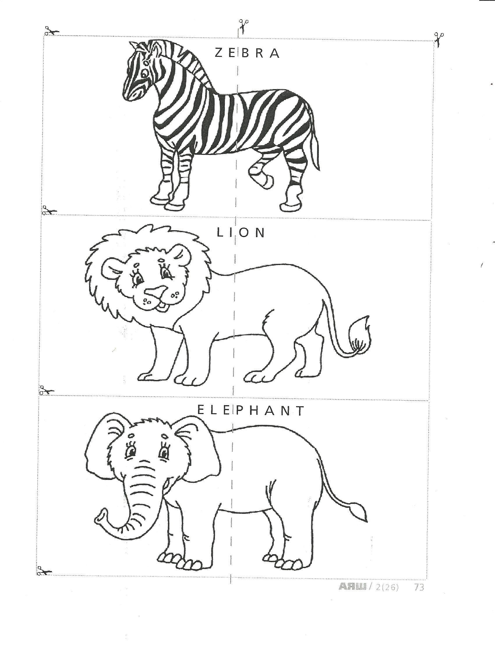 G:\Урок английского языка Животные Сафари Парка 3 класс УМК Millie учитель Штурмина ОС шк№18\Приложение1.jpg