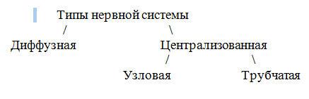 hello_html_m11946770.jpg