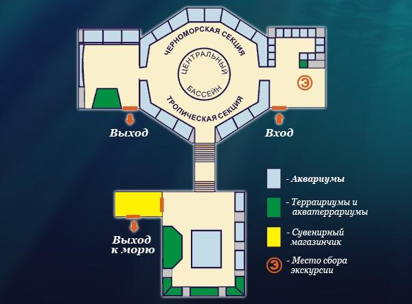 http://www.sevaquarium.com/templates/aquarium/images/shema.jpg