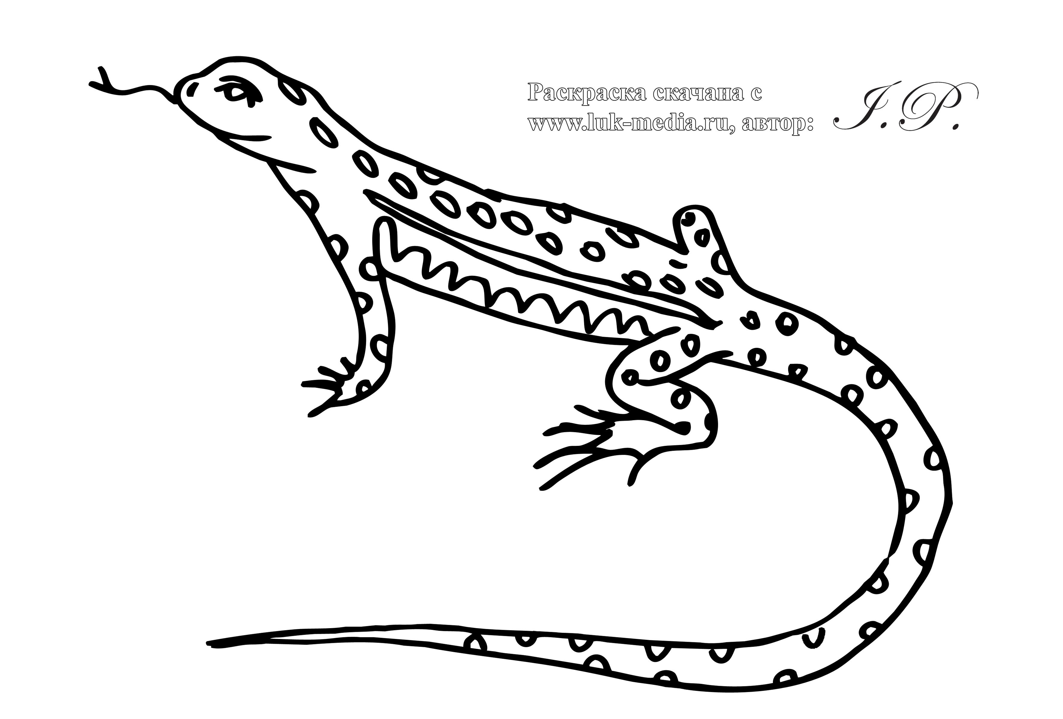 Раскраска ящерицы для детей