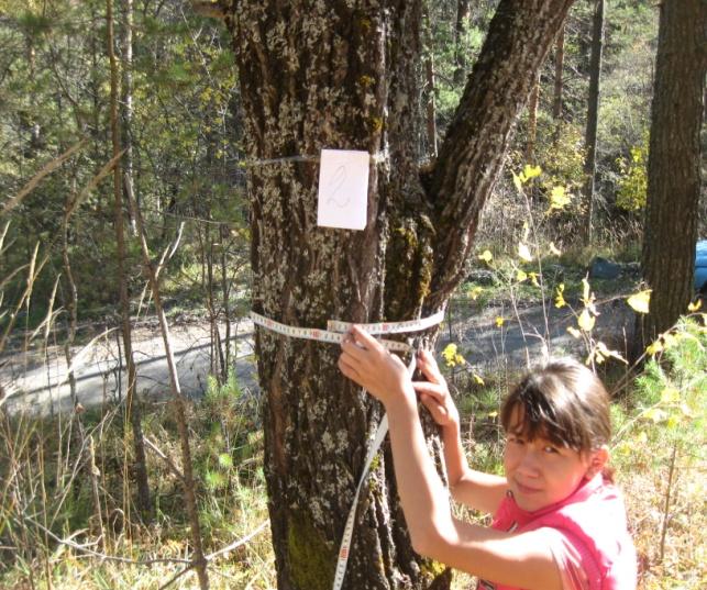 D:\школа\все мамы\ботаника\юный сследователь\Алина в лесу\IMG_4476.JPG