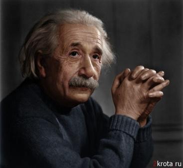 эйнштейн.jpeg
