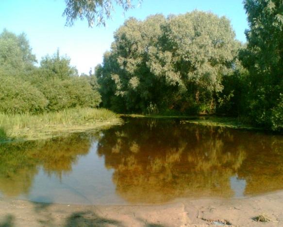http://www.stihi.ru/pics/2009/12/29/699.jpg