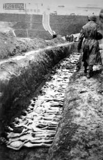 Штатлаг Нюрнберг