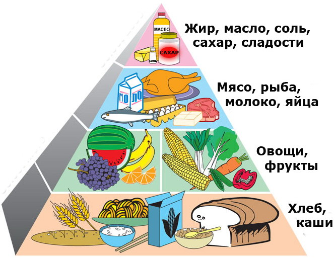 C:\Users\Дмитрий\Desktop\пирамидка питания 2.jpg