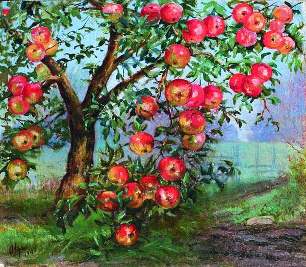 C:\Users\Дмитрий\Desktop\яблоня с яблоками 2.jpg