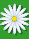 hello_html_m38461eae.png