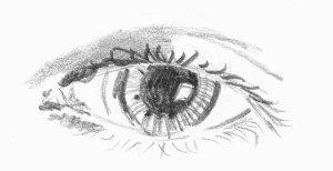 http://www.brentwindsor.co.uk/tips/eye_sketch.jpg