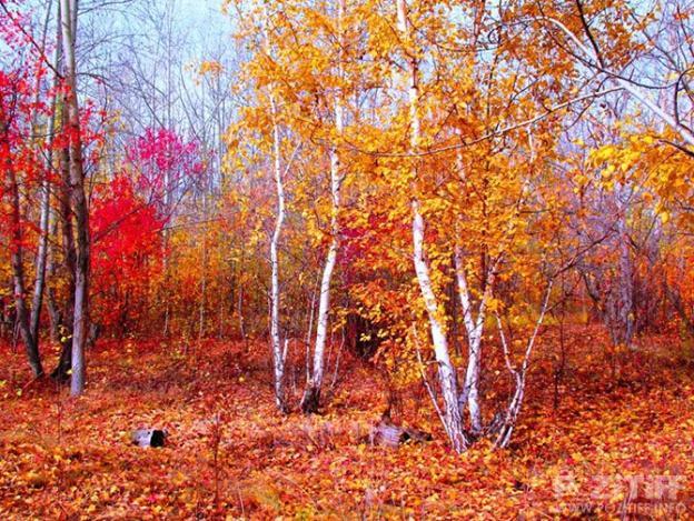 http://www.pozitiff.info/uploads/posts/2012-09/1348874902_11.jpg