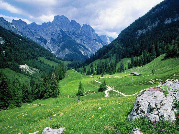 горы и луг.jpg